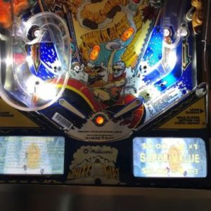 White Water Pinball EL Panel